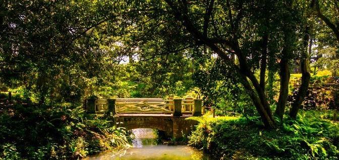 Featured archivos atractivos tur sticos roat n isla de for Jardin botanico tarifas